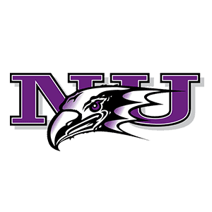 Niagra Purple Eagles Logo